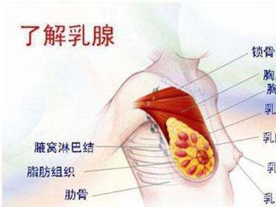 哪些疾病会诱发乳腺癌