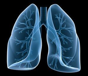 导致高发肺癌的病因