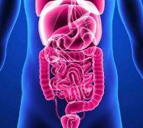 饮食方法能预防消化道癌症吗