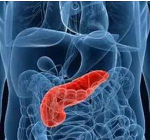 突然之间的消瘦可能是胰腺癌