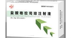 盐酸格拉司琼注射液(Granisetron Hydrochloride Injection)