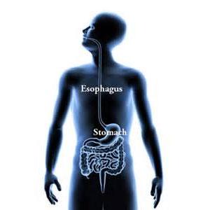 食道癌诊断检查的相关介绍