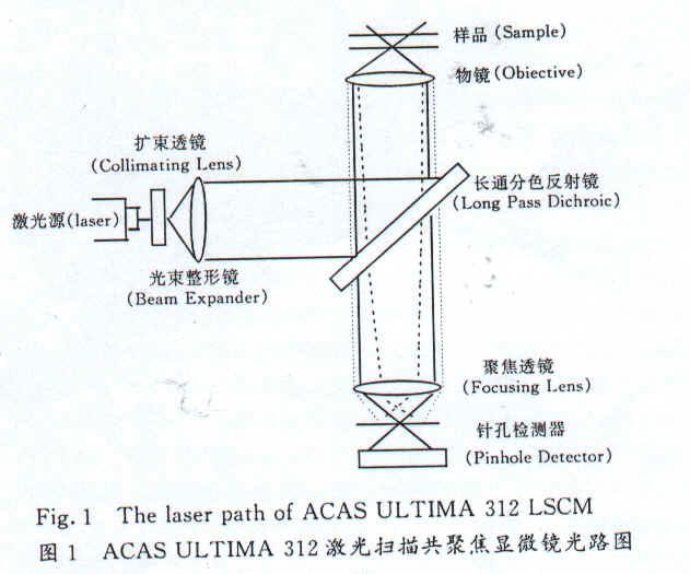 电路 电路图 电子 原理图 631_525