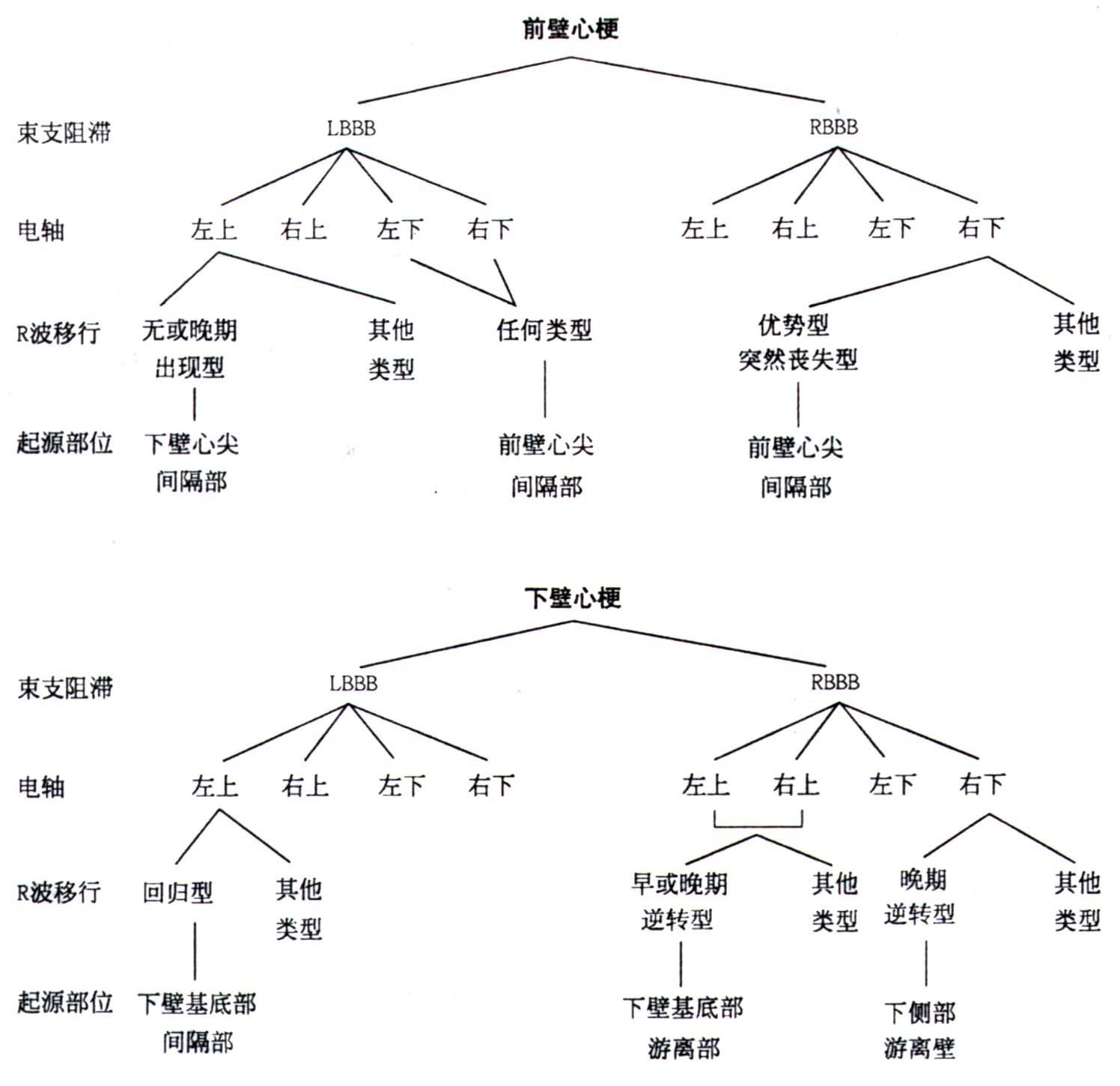 图3 室速的起源部位与体表12导联心电图间关系流程图