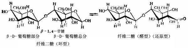 上二式中,麦芽糖分子中的苷键是-1,4-苷键(-1是指糖的部分在C-1上的-型半缩醛羟基,4是指苷元C-4上的羟基),纤维二糖的苷键是-1,4-苷键。-苷键和-苷键都可被酸水解,也可被某些有立体特异性的酶水解。人体内的麦芽糖只能水解-苷键而不能水解-苷键。苦杏仁苷酶则只能水解苷键而不能水解-苷键。   二、重要的二糖   (一)蔗糖   蔗糖广泛地分布在各种植物中,甘蔗中约含26%,甜菜中含20%,故又称甜菜糖,各种植物的果实中几乎都含有蔗糖。平时食用的就是蔗糖。我国是世界上用甘蔗