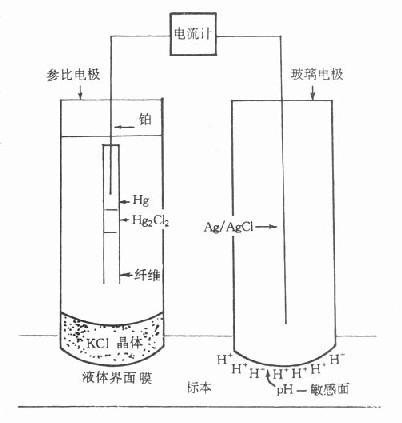 碳酸根离子立体结构图