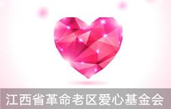 江西省革命老区爱心基金会活动
